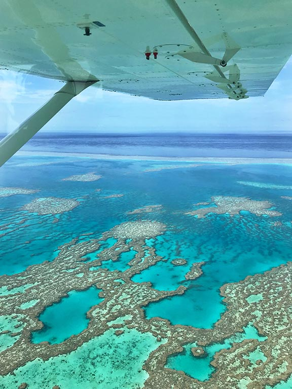 NEW_Great barrier reef