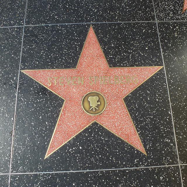 31 star