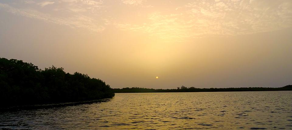 Sine Saloum sunset