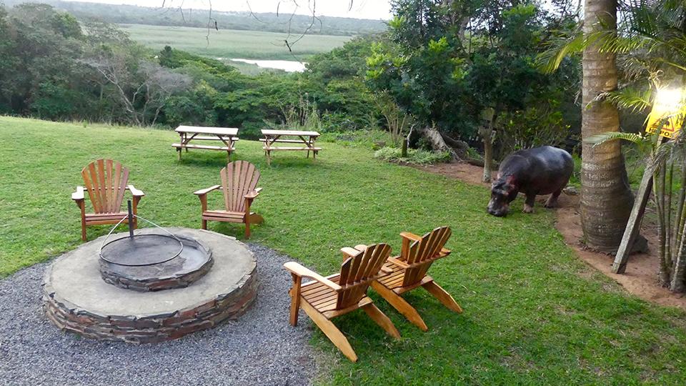 St-Lucia apéro avec hippo