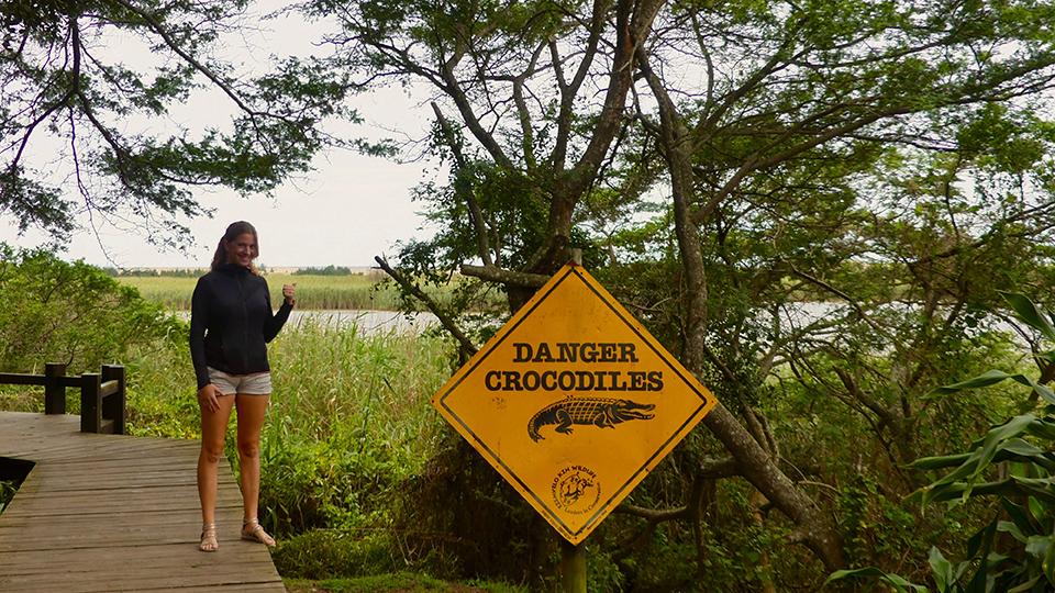 St-Lucia panneau crocos