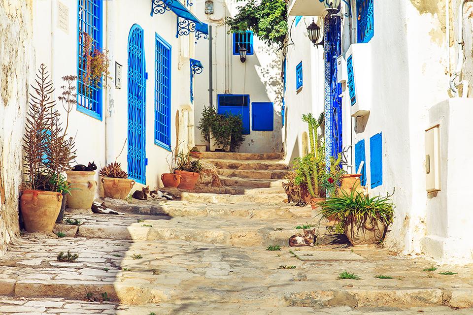 White-blue city of Sidi Bou Said, Tunisia. Eastern fairy tale with a French charm.